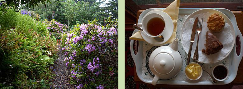 Tigh Na Bruach garden (left) - Tea tray (right)